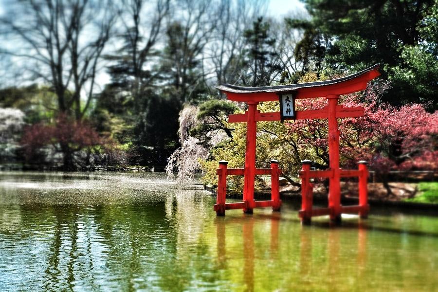 Merveilleux Brooklyn Botanical Garden